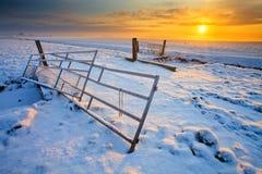 Wiese und Zaun im Winter Lizenzfreie Stockbilder