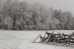 Wiese unter Schnee Stockbild