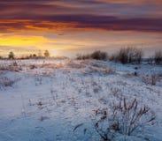 Wiese unter Schnee am winterlichen Morgen Lizenzfreie Stockfotografie