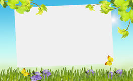 Wiese voll des gelben Löwenzahns Lizenzfreie Stockfotos