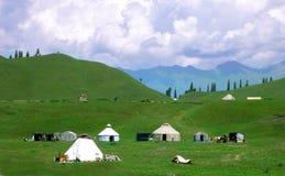 Wiese in Xinjiang-5 Lizenzfreies Stockbild