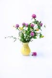 Wiesen-Blumen stockfoto