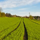 Wiesen, die das Dorf in der Schweiz umgeben Stockfoto