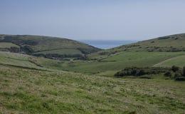 Wiesen in Dorset Stockfoto