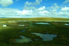 Wiesen-Landschaftsansicht in Tibet lizenzfreie stockbilder