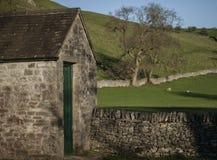 Wiesen, Schafe und eine Halle, Höchstbezirk, England stockbild