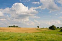 Wiesen und Felder Stockfotografie