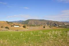Wiesen und Felder Andalucian mit Bergen Stockbilder