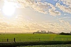 Wiesen und Felder in den Niederlanden Stockbild