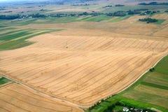 Wiesen und Felder. Luftbild. Stockfotografie