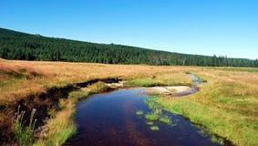 Wiesen und Fluss Wielka Izera Stockfotos