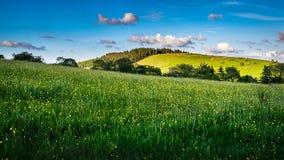 Wiesen und Hügel auf Frühjahr lizenzfreies stockbild