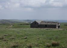 Wiesen und Scheunen in Wales - sonniges Wetter stockbilder
