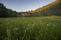 Wiesen- und Viaduktbrücke Lizenzfreie Stockbilder
