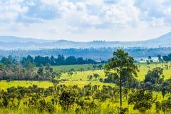 Wiesen und Wälder von Nord-Thailand Lizenzfreies Stockfoto