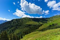 Wiesen unter blauem Himmel Österreich, Tirol, Zillertal, hohe alpine Straße Lizenzfreie Stockfotos