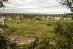 Wiesen von Tansania mit Fluss Stockbild