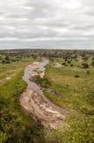 Wiesen von Tansania mit Fluss Lizenzfreie Stockbilder