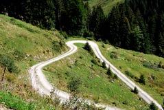Wiesen-Weg Stockbild
