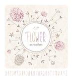 Wiesenblumen und -alphabet Lizenzfreies Stockfoto