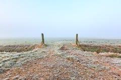 Wieseneingang auf einem kalten Wintertagesnebelhaften Morgen Stockbild