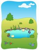 Wiesenfeld und kleiner See Stockbilder