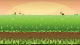 Wiesenfeldhintergrund Stockbilder