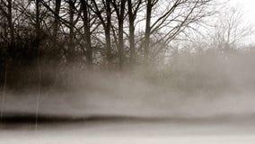 Wiesenlandschaft im Nebel stockbilder