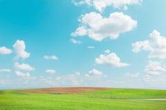 Wiesenlandschaft und Himmel im Freien Lizenzfreies Stockbild