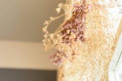 Wieszać wiązka suchy kwiat trawa i Fotografia Royalty Free