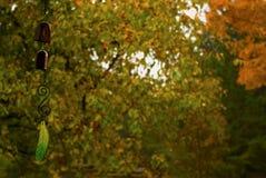 Wieszająca dekoracja nad rozmytym jesieni, spadku tłem/- Odbitkowa przestrzeń Zdjęcie Stock
