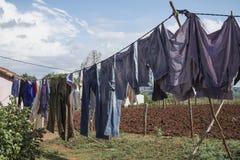 Wieszający odziewa suszyć przy ogródem po to, aby Fotografia Stock