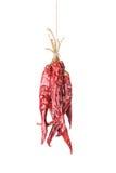 Wieszający Przypala Chili pieprze Zdjęcie Stock