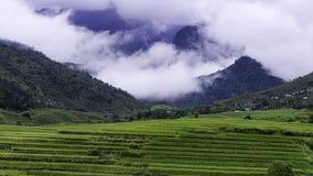 Wietnam Obrazy Stock
