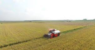 WIETNAM, KWIECIEŃ 15: Syndykata żniwiarz pracuje na polu w Tay Ninh Zdjęcie Royalty Free