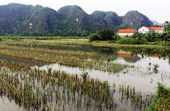 Wietnam Tama Coc zdjęcia royalty free