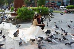 Wietnamska panna młoda, ślubna fotografia, ho chi minh miasto Zdjęcia Stock