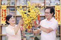 Wietnamska rodzina świętuje księżycowego nowego roku Fotografia Stock