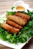 Wietnamski jedzenie Fotografia Royalty Free