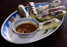 Wietnamskie Świeże wiosen rolki Obraz Royalty Free