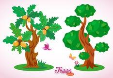 ?wietni wektorowi drzewa Zielony d?b z acorns Kolorowy ptak, motyl, kwiaty, trawa i ziele? gazon, Luksusowy ulistnienie royalty ilustracja