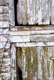 Wietrzejący drewno, Struga stajnię, Szczerbiąca się farba i Zielona foremka, Dekoruje Zaniechanego Rolnego budynek obrazy stock