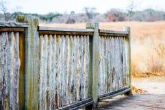 Wietrzejący drewniany ogrodzenie w polu złota preryjna trawa Obrazy Stock