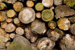 wietrzejący drewno Obrazy Royalty Free