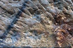 Wietrzejący piaskowcowy szczegół 8 Obraz Stock