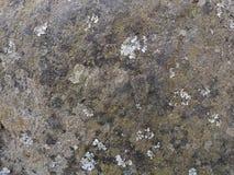Wietrzejący skały powierzchni tło Fotografia Royalty Free