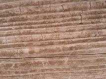 Wietrzejący Woodgrain tło Obraz Royalty Free