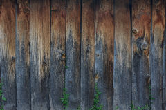 Wietrzejący Barnwood Zdjęcie Royalty Free