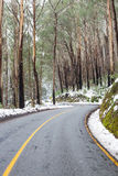 Wietrzna Australijska droga w śniegu fotografia stock