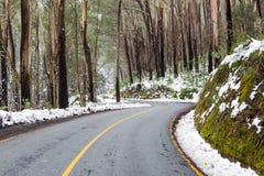Wietrzna Australijska droga w śniegu zdjęcie stock